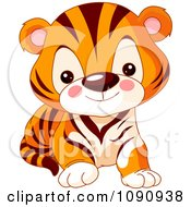 Clipart Cute Baby Zoo Tiger Cub Royalty Free Vector Illustration by Pushkin