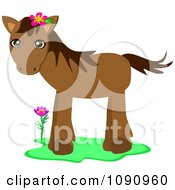 Clipart Cute Brown Pony Wearing A Pink Flower Behind Her Ear Royalty Free Vector Illustration by bpearth