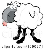 Clipart White Sheep Turning Its Head Back And Sticking Its Tongue Out Royalty Free Vector Illustration