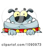 Clipart Gray Bulldog Looking Over A Sign Royalty Free Vector Illustration
