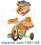 Bear Wearing A Helmet And Riding A Tricycle