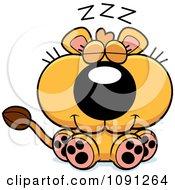 Cute Sleeping Lioness