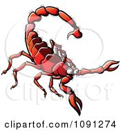 Clipart Red Scorpion Royalty Free Vector Illustration by Zooco