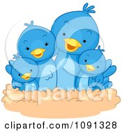Cute Blue Bird Family In A Nest