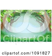 Clipart Lush Trees Forming A Canopy Over Grass In The Woods Royalty Free Vector Illustration by AtStockIllustration
