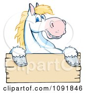 Happy White And Blond Horse Over A Wooden Sign