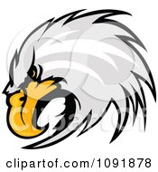 Clipart Focused Bald Eagle Head Royalty Free Vector Illustration