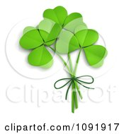 Clipart 3d St Patricks Day Clovers Tied Together Royalty Free CGI Illustration