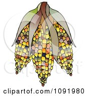 Clipart Colorful Indian Corn Royalty Free Illustration