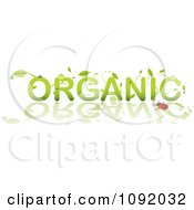 Clipart Green Dewey Leaves Forming Organic By A Ladybug And Reflection Royalty Free Vector Illustration by michaeltravers