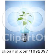 Clipart 3d Plant Inside A Light Bulb Royalty Free CGI Illustration by Mopic