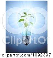 Clipart 3d Plant Inside A Light Bulb Royalty Free CGI Illustration