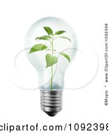 Clipart 3d Seedling Plant Inside A Light Bulb Royalty Free CGI Illustration