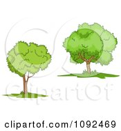 Clipart Two Mature Trees 1 Royalty Free Vector Illustration