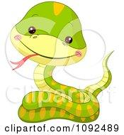 Cute Baby Zoo Snake