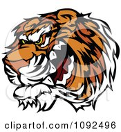 Clipart Angry Growling Tiger Mascot Head Royalty Free Vector Illustration by Chromaco