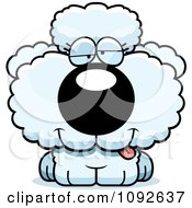 Clipart Goofy White Poodle Puppy Royalty Free Vector Illustration