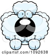 Clipart Cute White Poodle Puppy Looking Over A Surface Royalty Free Vector Illustration by Cory Thoman