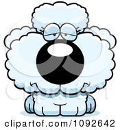 Clipart Depressed White Poodle Puppy Royalty Free Vector Illustration by Cory Thoman