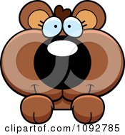 Clipart Cute Bear Cub Looking Over A Surface Royalty Free Vector Illustration