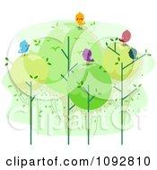 Happy Birds On Top Of Round Trees