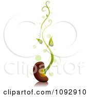 Clipart Sprouting Bean With Green Spots Royalty Free Vector Illustration