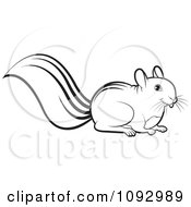 Clipart Black And White Squirrel Royalty Free Vector Illustration