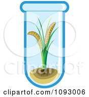 Clipart Gmo Wheat Growing In A Test Tube Royalty Free Vector Illustration by Lal Perera