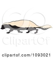 Clipart Walking Honey Badger Royalty Free Vector Illustration by Lal Perera #COLLC1093021-0106