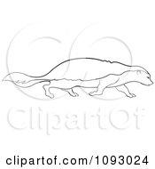 Clipart Outlined Walking Honey Badger Royalty Free Vector Illustration