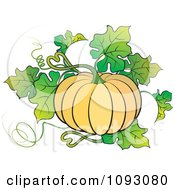 Clipart Beautiful Ridged Pumpkin Plant Royalty Free Vector Illustration by Lal Perera
