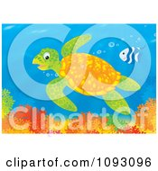 Clipart Sea Turtle And Fish Swimming Over A Reef Royalty Free Illustration by Alex Bannykh