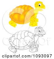 Clipart Happy Colored And Outlined Tortoises Royalty Free Illustration by Alex Bannykh