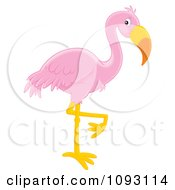 Pink Flamingo Balanced On One Leg