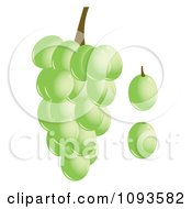 Clipart Green Grapes Royalty Free Vector Illustration