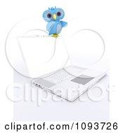 3d Blue Owl Resting On A Laptop