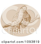 Clipart Sketched Turkey Bird Perched On A Branch Royalty Free CGI Illustration by patrimonio