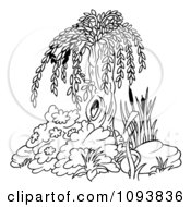Clipart Outlined Willow Tree And Plants Royalty Free Vector Illustration by dero