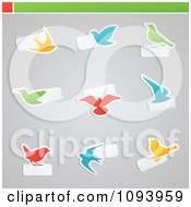 Clipart Orange Blue Green And Red Bird Icons With Copyspace Royalty Free Vector Illustration by elena