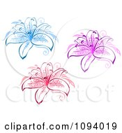 Clipart Blue Pink And Red Lily Flowers Royalty Free Vector Illustration