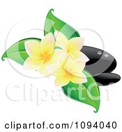 Black Hot Massage Stones And Yellow Frangipani Flowers With Leaves