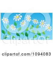 Clipart White Daisy Flowers On Curvy Stems Royalty Free Vector Illustration
