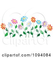 Clipart Colorful Daisy Flowers On Curvy Stems Royalty Free Vector Illustration