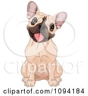 Clipart Cute French Bulldog Sitting And Cocking Its Head Royalty Free Vector Illustration by Pushkin