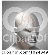 Clipart 3d Male Head With Brain Texture Royalty Free CGI Illustration