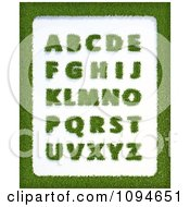Clipart Grassy Letters And A Border Royalty Free CGI Illustration