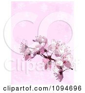 Clipart Background Of Pink Spring Blossoms Over Texture Royalty Free Vector Illustration
