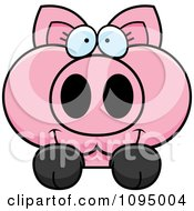 Clipart Piglet Looking Over A Surface Royalty Free Vector Illustration