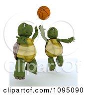 3d Tortoises Playing Basketball