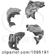 Clipart Grayscale Fish Royalty Free Vector Illustration